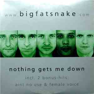 Big Fat Snake - Nothing Gets Me Down download free